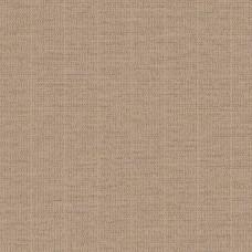 Loymina Cachemire – Ch6 012/3